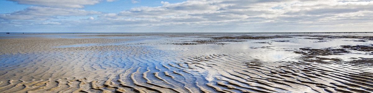 Der Nationalpark Wattenmeer auf der Nordseeinsel Föhr bei Ebbe im Sonnenschein.